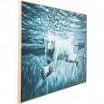 Zooff Picture Frame Alu Swimming Polar Bear 80x20cm Ijsbeer
